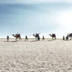 White-Rann-of-Kutch-Feature